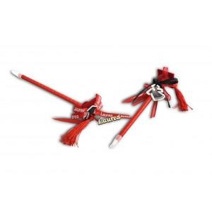 Penna laurea rosso con pendenti